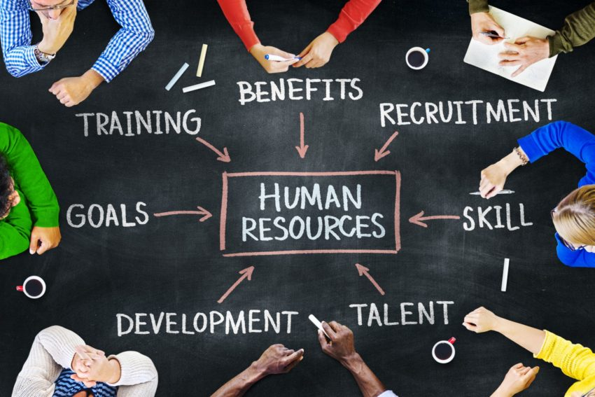 Why Online HR Software is Important for Small and Medium-sized Business